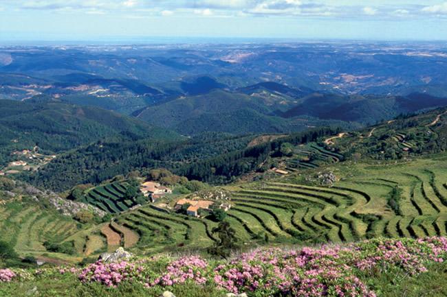 Алгарве, природа, Португалия